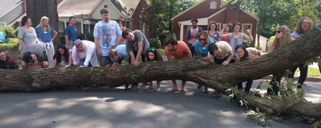 alfsummer16-day01-tree-ready-1024x408